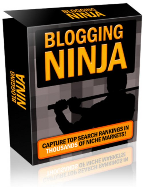 Pay for New*Blogging Tool for SEO