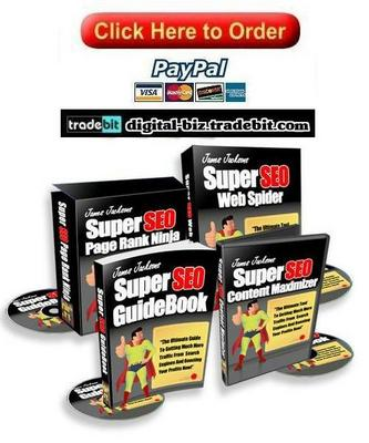 Pay for Super SEO Guide Book