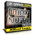 Thumbnail Dirty South Producer Kit Vol.2 Acidized Loops