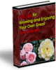 Thumbnail 101 Tips To Growing Your Own Rose Garden PLR