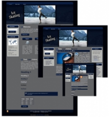Pay for Ice Skating Blogger Html WP Theme with MRR