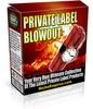 Thumbnail Mega PLR Blowout - PLR Madness Offer