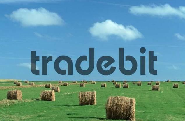 Hay Balls, Island Amrum, Germany