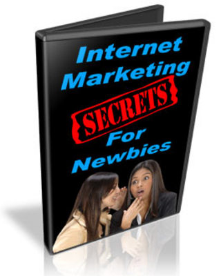 Pay for Internet Marketing Secrets For Newbies Instruction Video-MRR